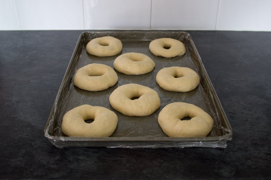 unbaked homemade doughnut rings on a baking tray after being proved