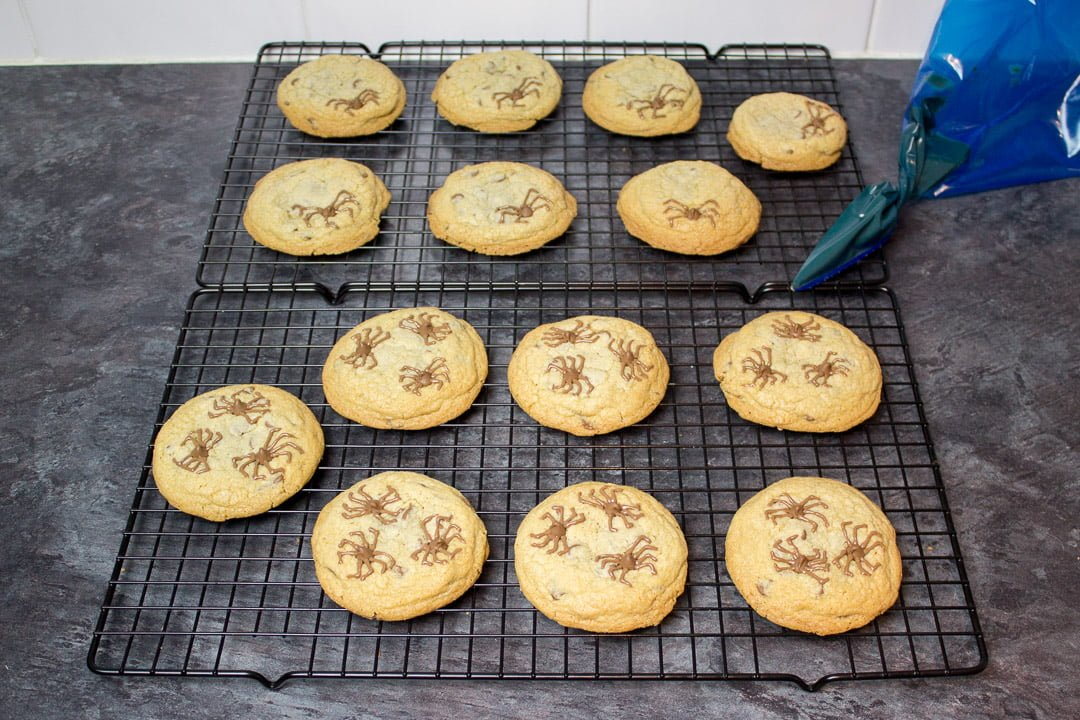 chocolate chip cookies with chocolate spider design on top