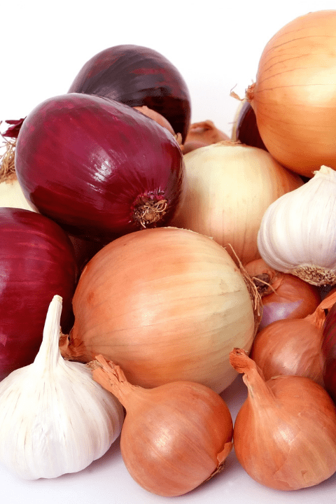 Onions and garlic in a large pile