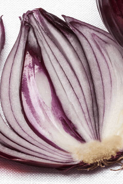 cross section of a red onion