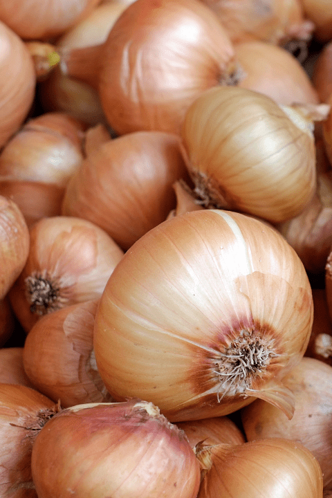Brown onions in a large pile