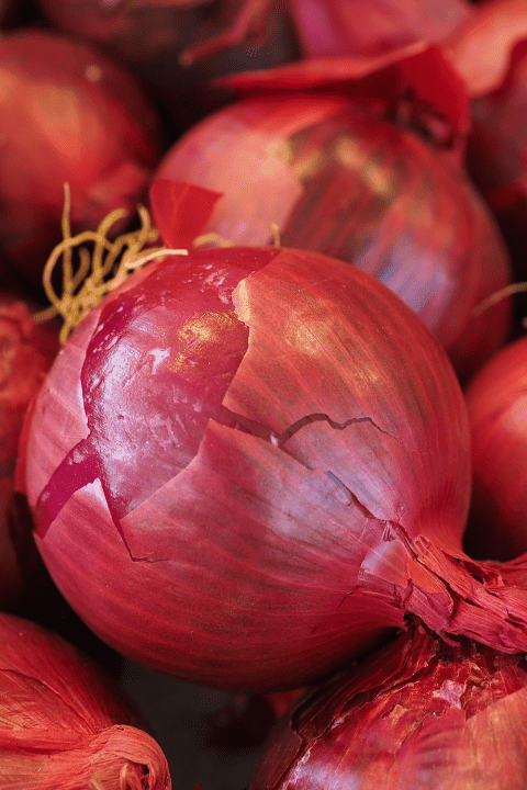 Red onions in a large pile