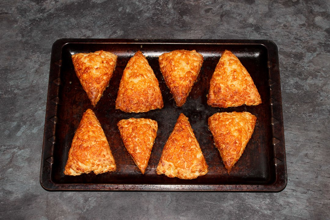 Freshly baked cheese scones on a baking tray